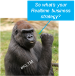 RLTM Monkey says Whats your realtime business strategy