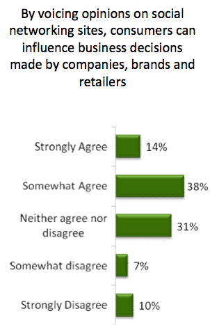 Brands Influenced by Opinions on Social Networks