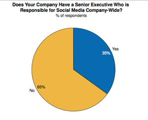Business Use of Social Media: 35% Have Senior Level Exec Responsible for Social Media