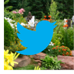 Twitter is building a Walled Garden. What will it look like?