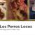 Foursquare business profile